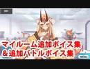 Fate/Grand Order 茨木童子 追加マイルームボイス&バトルボ...