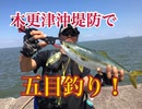 木更津沖堤防で五目釣り!【もっち釣動組合♯58】