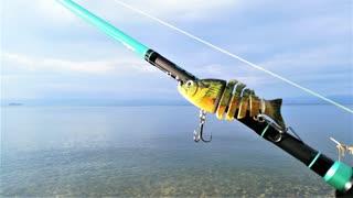 【釣り・Fishing】琵琶湖でバス釣り@釣れ