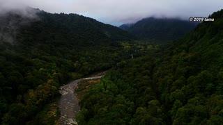 くもり時々はれ R352福島県と新潟県を結ぶ金泉橋 -只見川- 2019 空撮