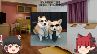 巫女と猫娘のSCP紹介 part20(第2クール)