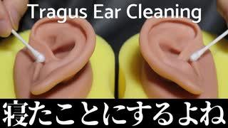【ASMR】眠れぬ者は(多分)いない耳珠耳かき【音フェチ】