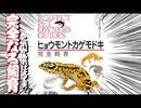 【完全飼育】ヒョウモントカゲモドキ完全飼育を読んだ感想【おすすめ】
