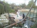 神戸 王子動物園に行ってきたよ! その3 アシカの餌やり。...
