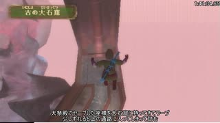 【RTA】ゼルダの伝説 スカイウォードソード Any% 2:09:22 Part5【字幕解説】
