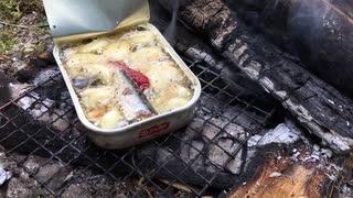野菜とオイルサーディンの野外料理 No.9
