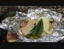 秋の味覚、川で鮭のホイル焼きの野外料理 No11