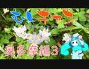 【ソロキャン】むしキャン 奥多摩編3【ゆっくり】