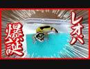 【歓喜】ヒョウモントカゲモドキ(レオパ)の赤ちゃんが誕生しました【第一号】