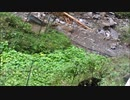 2019.10.12~10.20 台風19号と主ととある奥多摩わさび田及び林道の様子