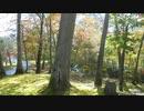 623北海道旅先【 夕張滝の上公園】紅葉