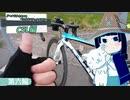 ロードバイクで和歌山県から滋賀県までRTA ワールドサイクル&ベックオンフェスタ2019 C5L編 第六輪
