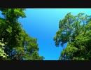 東北ずん子とgungunGUNMA釣り修行#10「盛夏の渓流探検」
