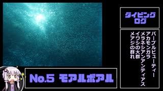 ダイビングログ ログNo.5:モアルボアル