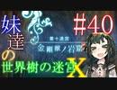 【世界樹の迷宮X】妹達の世界樹の迷宮X #40【VOICEROID実況】