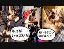 【実況】大乱闘スマッシュブラザーズSPECIALやろうぜ! その107 オンライン対戦篇43