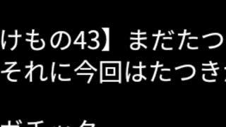 けもの43】