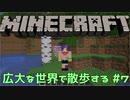 【実況プレイ】広大な世界で散歩する【Minecraft】【第四回】#7