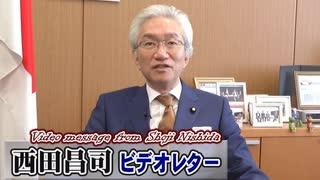 【西田昌司】MMTワンポイントレッスン、死蔵されている国債という「通貨供給」[桜R1/10/30]