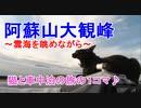 【旅猫あずき】阿蘇山大観峰で叫ぶ\(^o^)/【保護猫から旅猫へ】