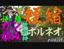 ジャンプ短縮逆境強化ガン積み地雷神ボルネオが往くpart.34【...