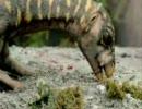 タイムスリップ!恐竜時代 南極編その3
