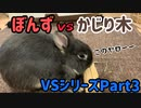 【うさぎ】ぼんずvsかじり木 VSシリーズPart3