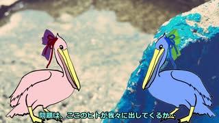 【VOICEROID劇場】ペリカン(CV-琴葉姉妹)