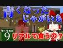 【MineCraft】ゆくラボEX バニラでリケジョが自給自足生活 DAY9【ゆっくり実況】