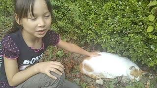 公園でめちゃくちゃかわいいネコを見つけたよ! ついにさわらせてもらった。ふわふわで気持ちいい〜! in 府民の森 四條畷市 その2
