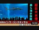 沖縄リゾート旅行記5 美ら海水族館と幸っちゃんそば(沖縄そば)
