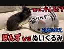 【うさぎ】ぼんず vs ホワイトタイガーマスク VSシリーズPart6