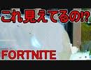 おそらく中級者のフォートナイト実況プレイPart172【Switch版...