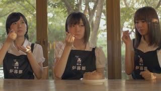 非ホロノミック系 茶店のガール Episode3「ゲンゴロボの誕生日」
