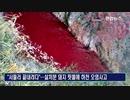 アフリカ豚コレラで殺処分し埋設場所無く積み上げた豚の血が川を汚染