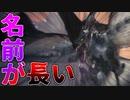 【MHW:IB】「凍て刺す」は「凍り付く」という意味らしいです【ゆっくり実況】 #11
