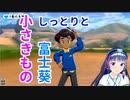 【小さきもの】ポケモン剣盾初プレイ中に急に歌い出す富士葵