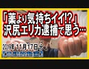 「薬より気持ちイイ!?」沢尻エリカ逮捕で思うetc【日記的動画(2019年11月17日分)】[ 231/365 ]