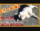【ぎょむ旅】魚貫炭鉱 ノンテロップ(2019年11月5日)