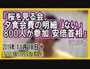 『桜を見る会、夕食会費の明細「ない」 安倍首相』についてetc【日記的動画(2019年11月18日分)】[ 232/365 ]
