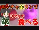 【MineCraft】ゆくラボEX バニラでリケジョが自給自足生活 DAY22【ゆっくり実況】
