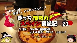 【ゆっくり】スペイン周遊記 21 コルドバ名物料理とホテル紹介