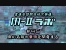 """厨二病ラジオ『M-Ⅱラボ』#45 鳥の名前の""""乗物""""を開発する"""