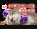 【モアクリ】 猫用マッサージローラーを使ってみた