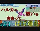 【24歳フリーターの】ポケモンルビー・サファイア~アクア団でクリアの旅~part21【レトロゲー】【ソードシールド発売記念!】