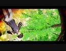 【MMD刀剣乱舞】堀川くんがブランコに乗っているムービー