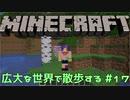 【実況プレイ】広大な世界で散歩する【Minecraft】【第四回】#17