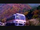 【のら】高山本線を走行するキハ85 その09