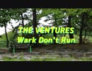 The Ventures Wark Don't Run(Cover)