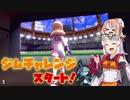 【ポケモン剣盾】そら×ついの色違いガラル旅~ジムチャレンジスタート!~part3